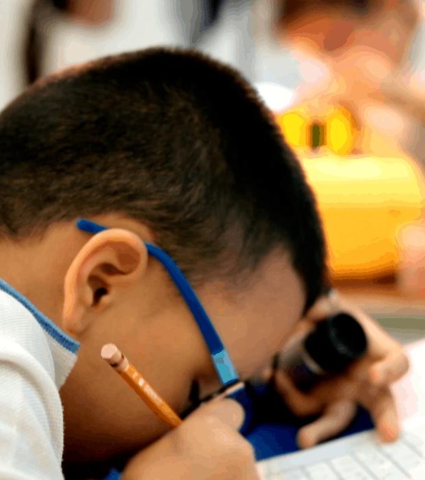 Objetivos del programa de Discapacidad Visual - Unidad de rehabilitación del Instituto para niños ciegos y sordos del Valle del Cauca
