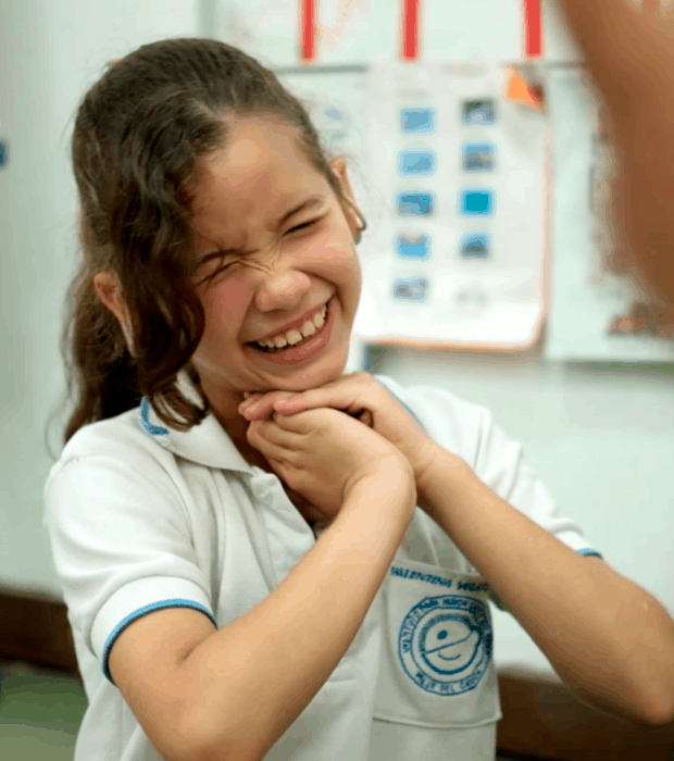 Objetivos del programa de Discapacidad Auditiva - Unidad de rehabilitación del Instituto para niños ciegos y sordos del Valle del Cauca